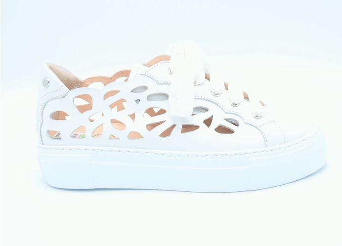 AGL Sneaker D92524 White
